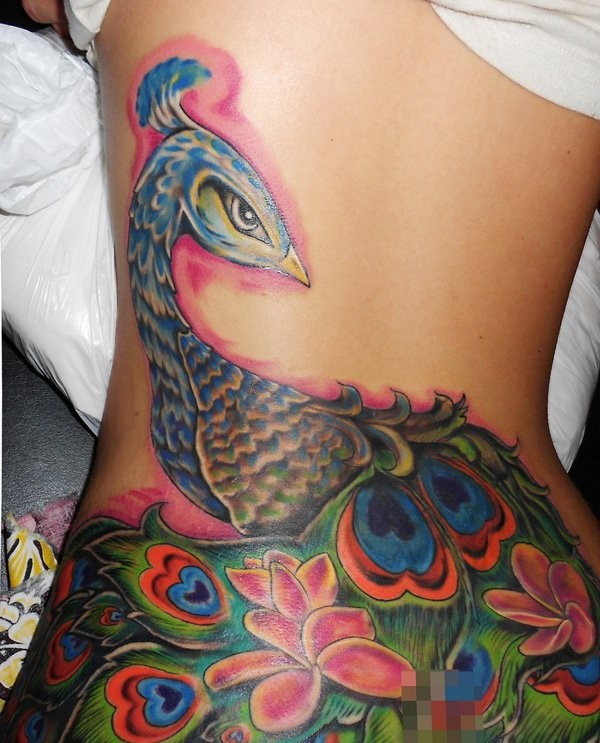 Illustrative style colored large whole back tattoo of peacock bird