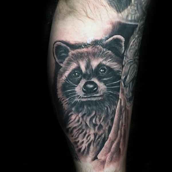 Illustrative style colored leg tattoo of very detailed raccoon
