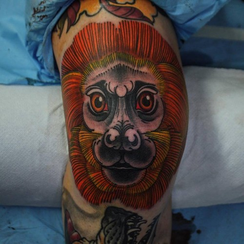 Illustrative style colored tattoo of funny lion