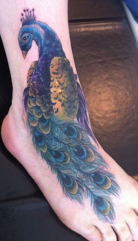 Illustrative style medium size colored ankle tattoo of peacock