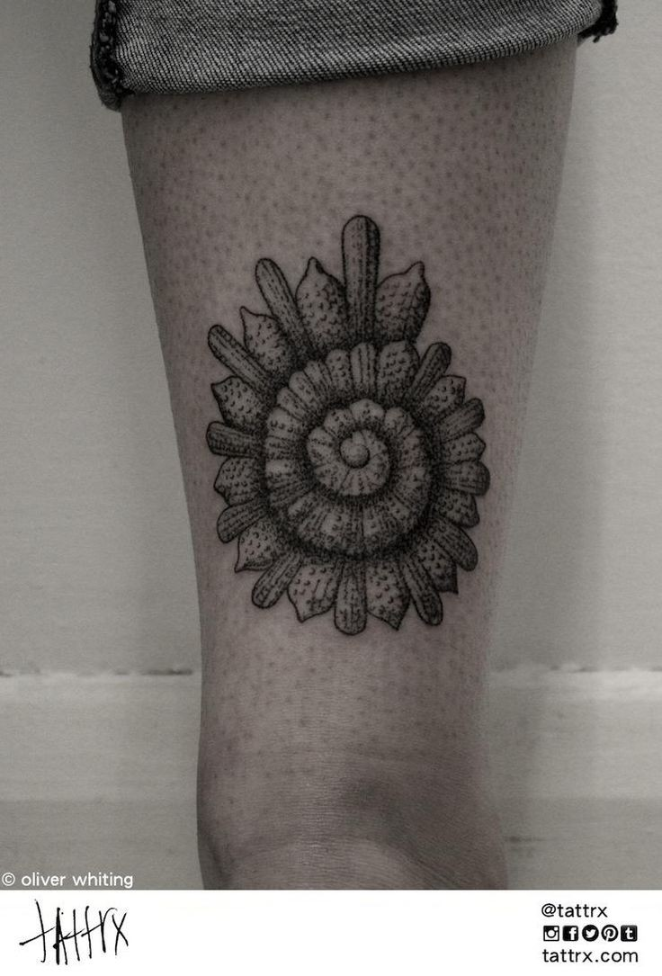 Impressive shell shaped tattoo on ankle