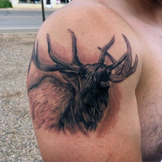 Incredible black and gray style big shoulder tattoo of elk