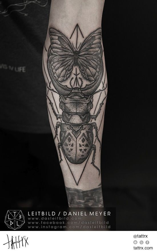 Incredible painted big beetle with butterfly tattoo on arm