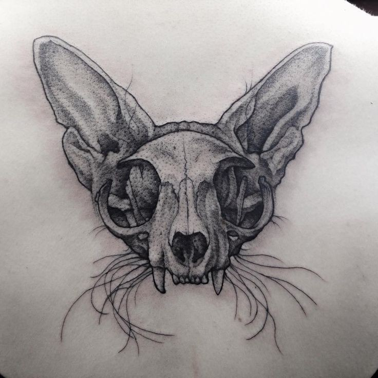 Large 3D dot style back tattoo of cat skull with ears