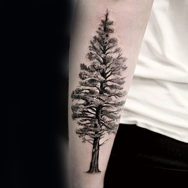 Large black and white forearm tattoo of tall tree