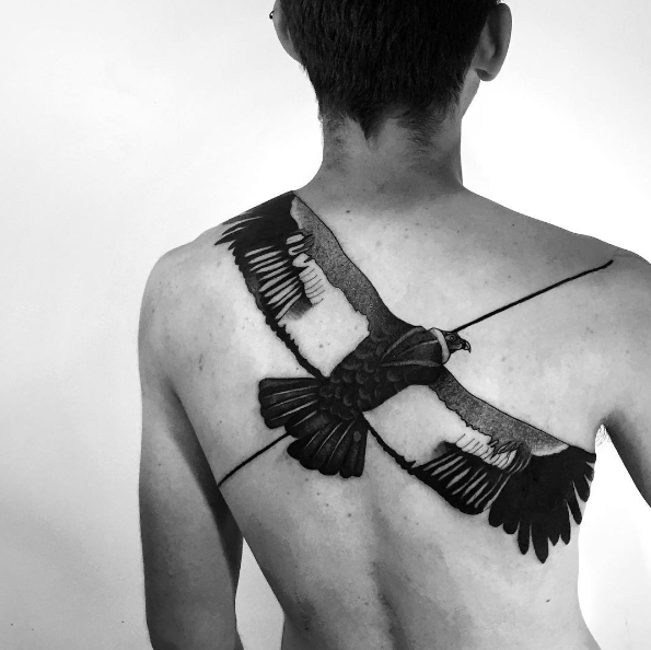 Large illustrative style upper back tattoo of big flying bird with black line