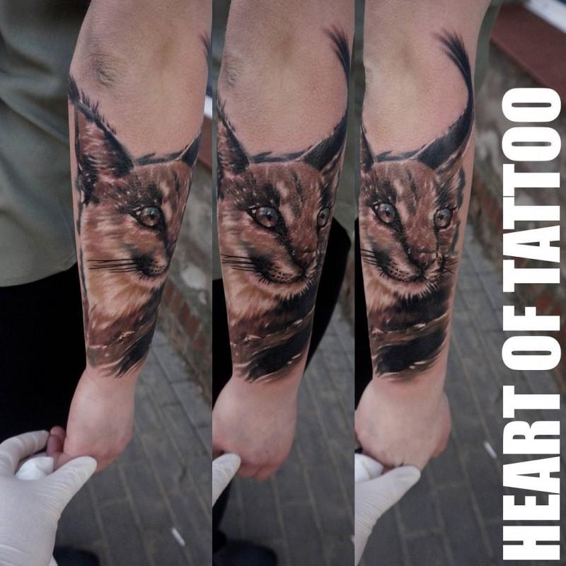 Lifelike beautiful looking caracal portrait tattoo on arm
