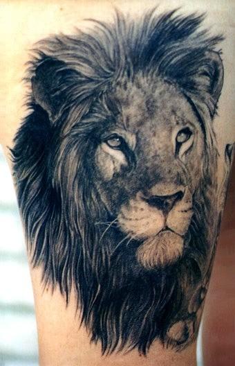 Lion black ink tattoo on arm