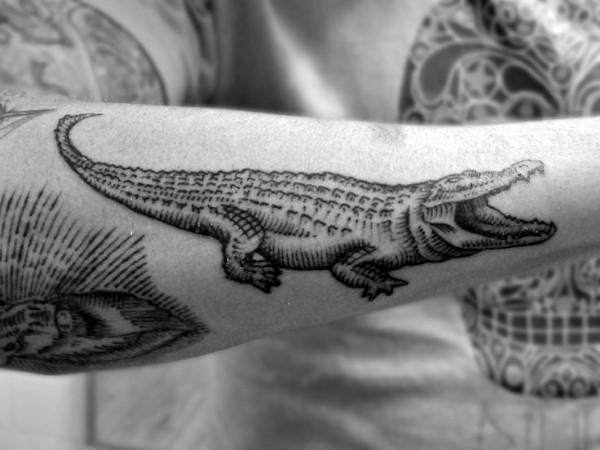 piccolo divertente dipinto alligatore inchiostro nero tatuaggio su braccio
