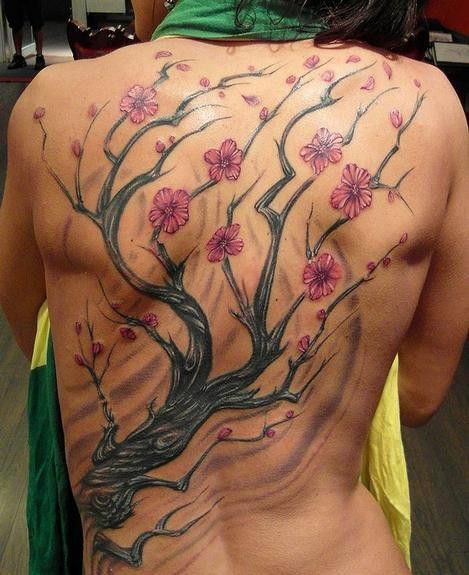 Lovely cherry blossoms tree tattoo on whole back
