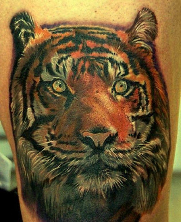 bello colorato testa tigre tatuuaggio