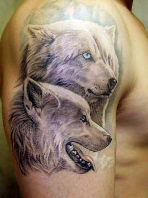 bello orso polare lupo tatuaggio sulla spalla
