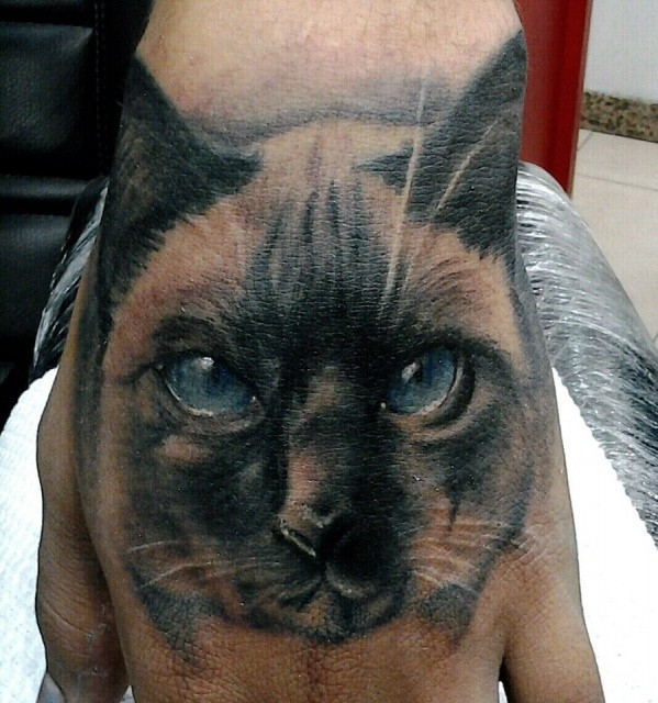 Lovely realistic cat tattoo on wrist