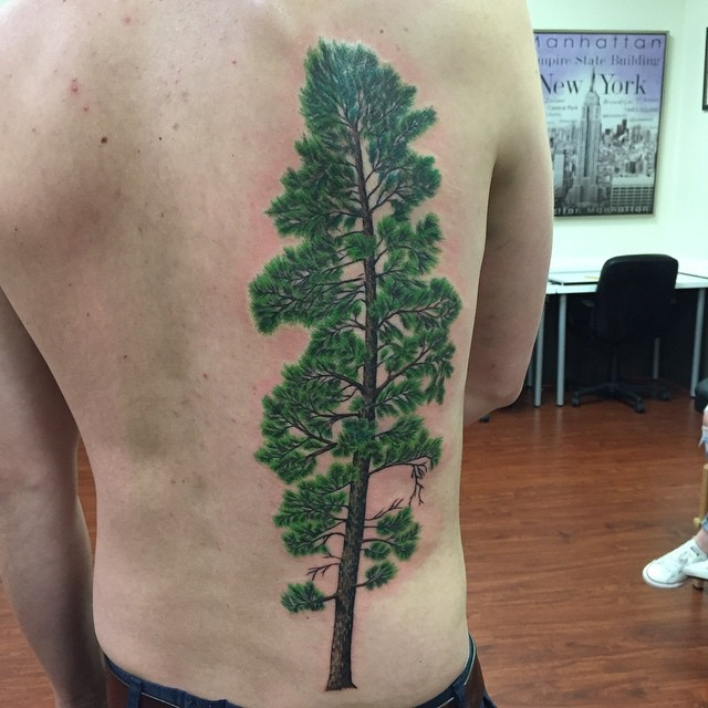 Magnificent giant naturally colored pine tree tattoo on back