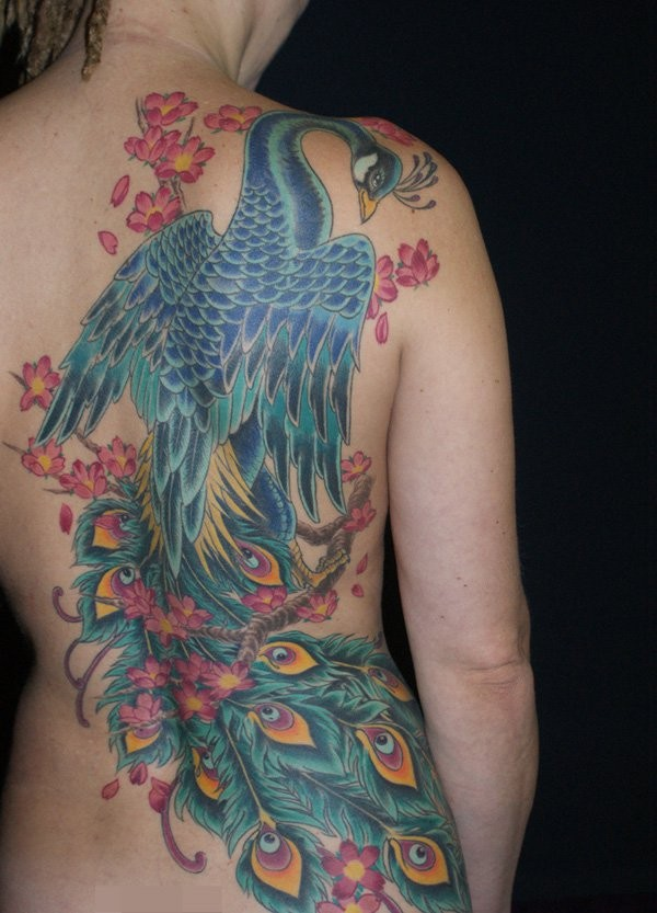 Magnificent illustrative style colored large whole back tattoo of peacock bird