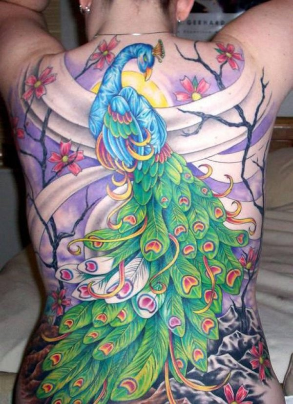 Marvelous illustrative style large whole back tattoo of peacock in dark blooming forest