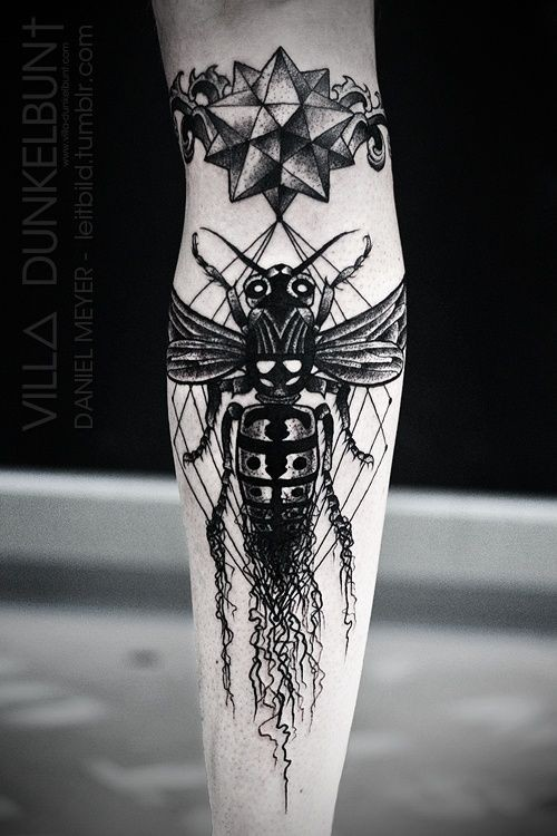 Massive black and white insect with star tattoo on arm