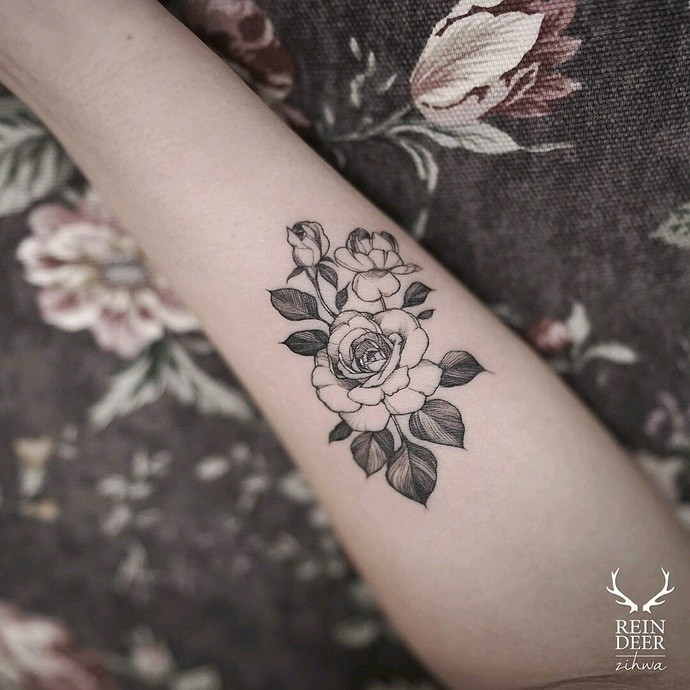 Medium size small nice looking painted by Zihwa tattoo of roses