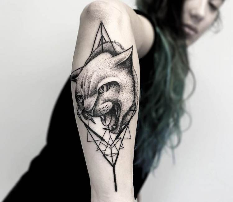 Modern dot style amazing looking arm tattoo of angry cat