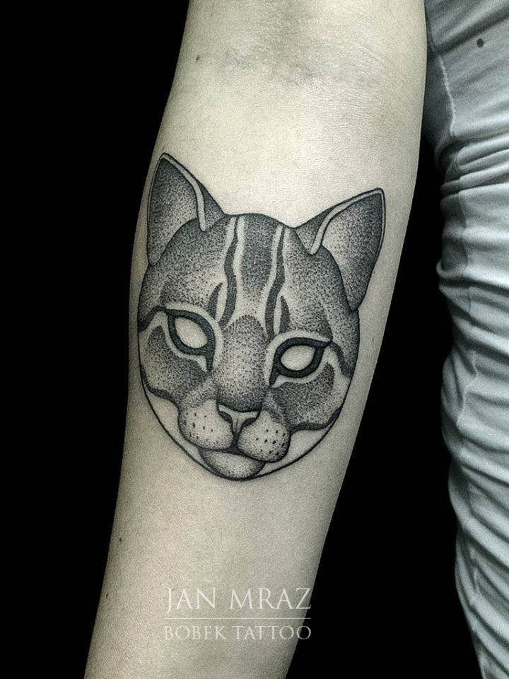 Modern dot style black ink forearm tattoo of cat mask