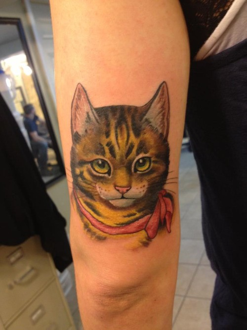 Modern style colored arm of nice cat with pink ribbon