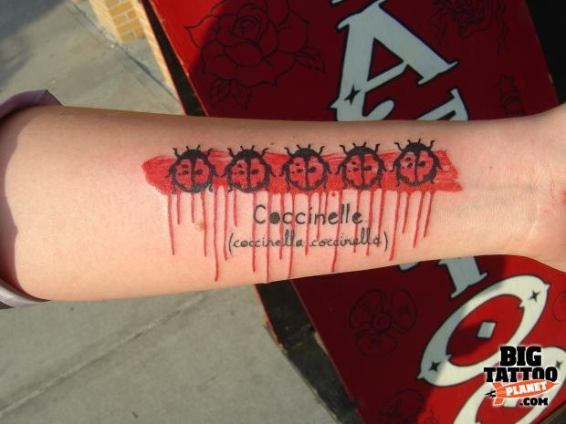 Modern style colored forearm tattoo of ladybugs with lettering