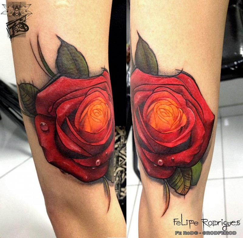 Modern traditional style colored arm tattoo of rose
