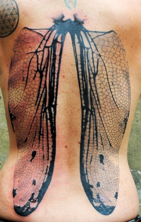 Natural looking black ink whole back tattoo of detailed fly wings