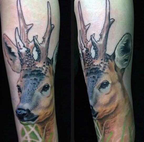 Natural looking colored arm tattoo of sweet looking deer