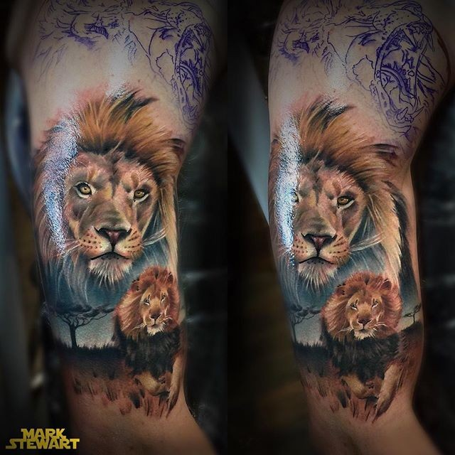 Natural looking colored shoulder tattoo of lion in wildlife