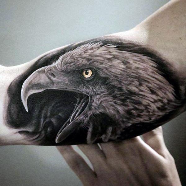 naturale molto dettagliato colorato testa di aquila tatuaggio su braccio