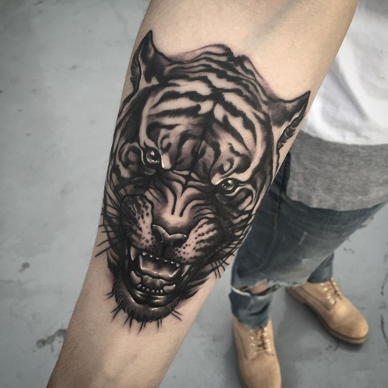 New school style black ink forearm tattoo of angry tiger