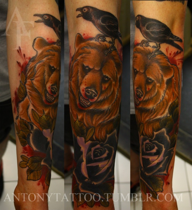New school style colored forearm tattoo of big bear with crow and rose