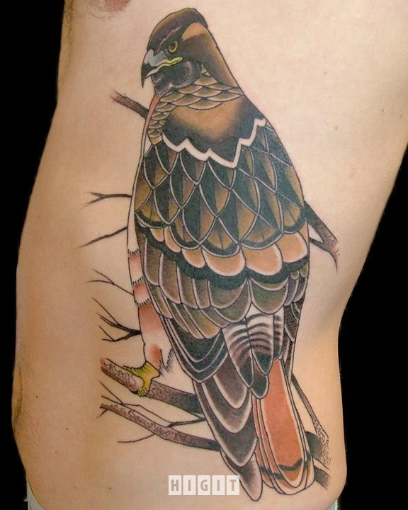 New school style colored side tattoo of very beautiful eagle