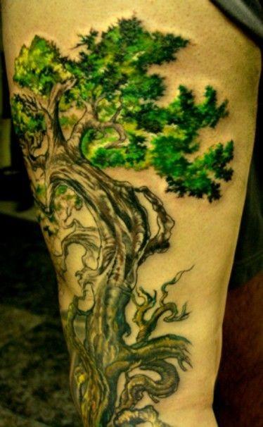 Tatuaggio verde sulla gamba l&quotalbero con le foglie verde