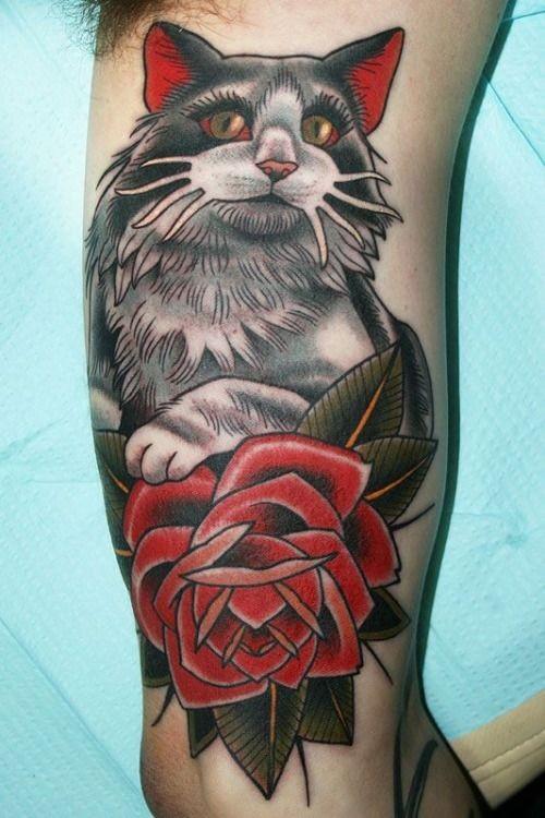 bel gatto con rosa rossa tatuaggio  su braccio