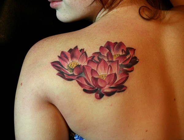 Nice dark red lotuses tattoo on shoulder blade