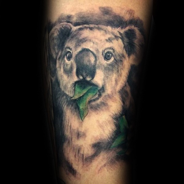 Nice looking natural painted koala bear with leaves