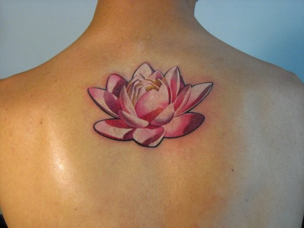 bello fiore loto rosa tatuaggio sulla schiena