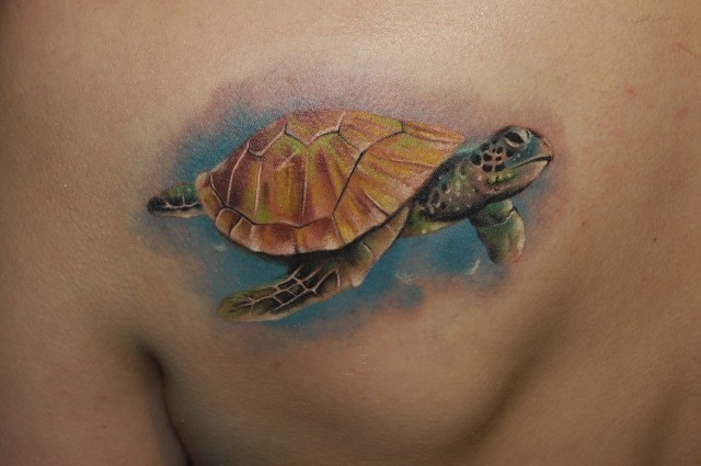 Nice watercolor realistic turtle tattoo on shoulder blade