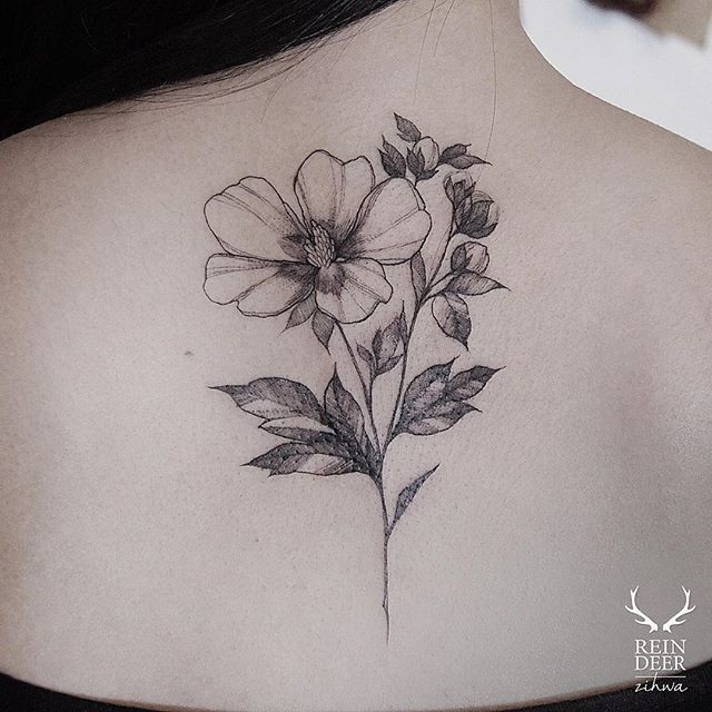 Outline style black ink upper back tattoo of flower by Zihwa