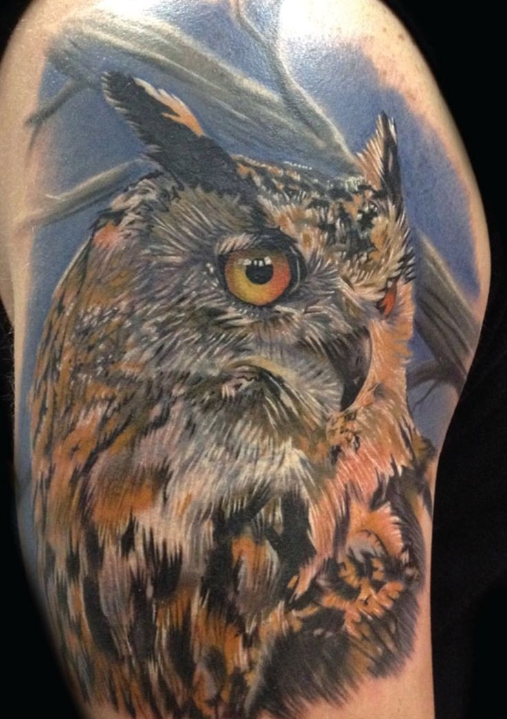 Owl bird tattoo on his shoulder