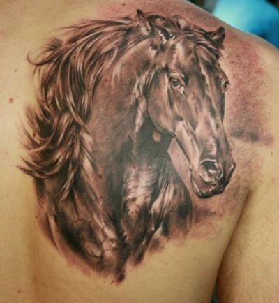 Photo Realistic horse tattoo on shoulder blade