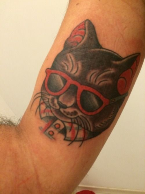 Portrait of a cat wearing glasses with a red rimmed tattoo