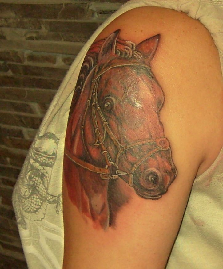 Portrait of racehorse tattoo on half sleeve