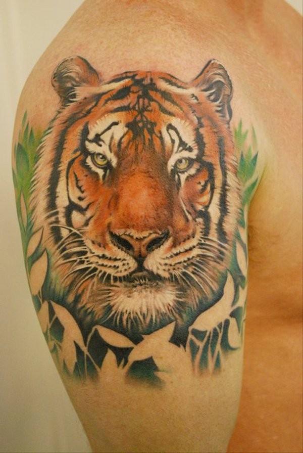 Portrait tiger face tattoo on shoulder