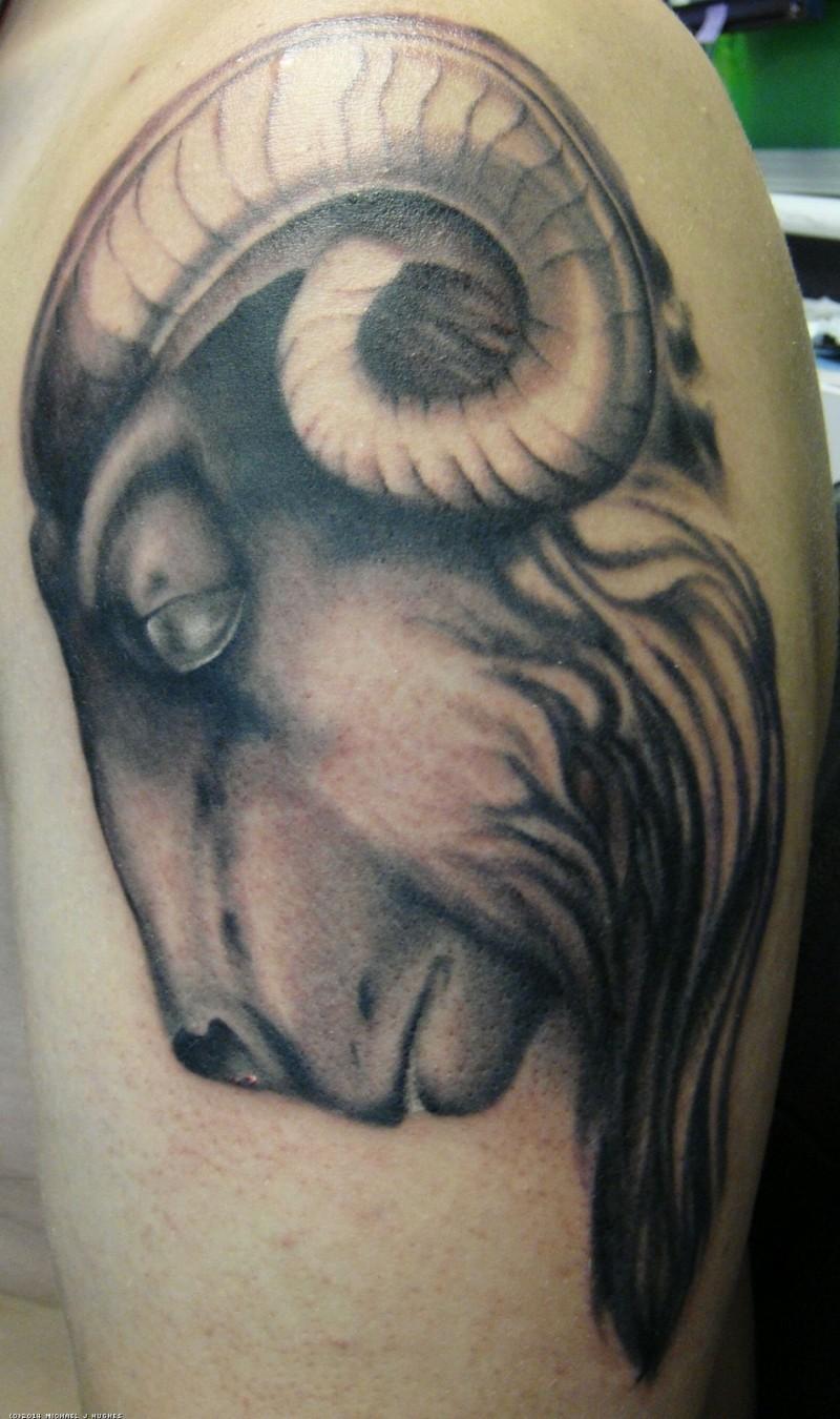 Tattoo von Rammkopf mit Schatten