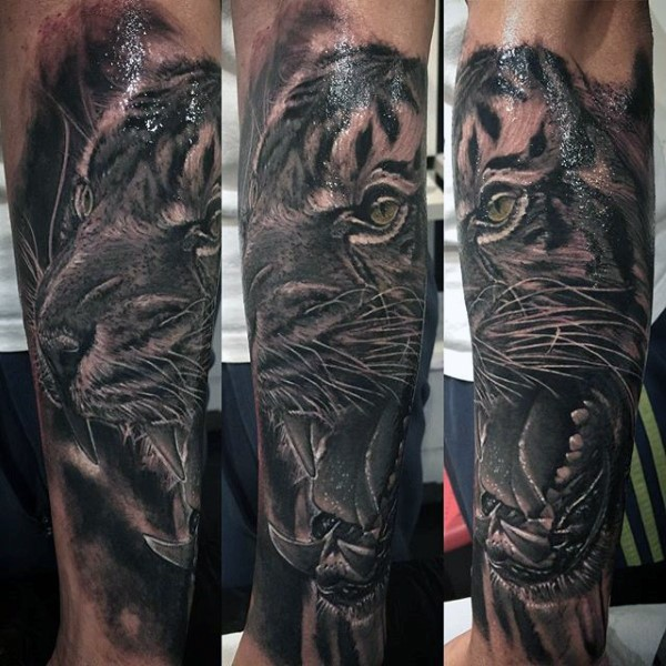 Realism style black and white forearm tattoo of tiger face