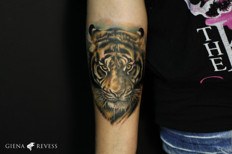 Realism style colored forearm tattoo of tiger