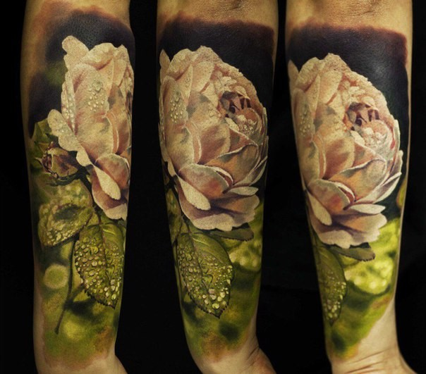 Realism style colored forearm tattoo of white rose